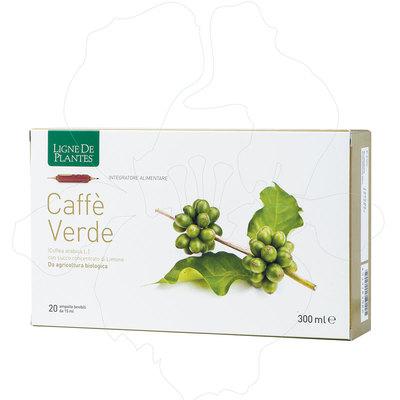 Integratore caffè verde