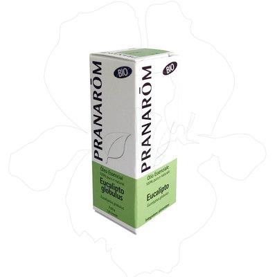 Olio essenziale eucalipto globuloso