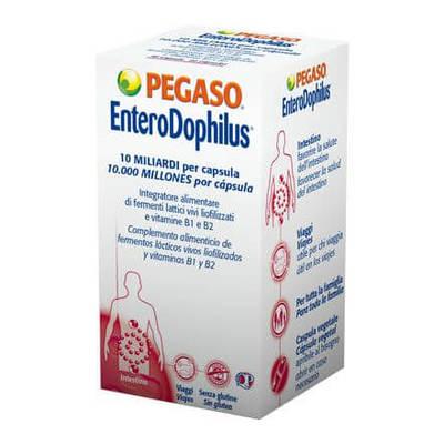 EnteroDophilus 40 capsule