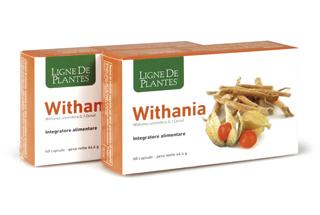 Withania Ligne de Plantes