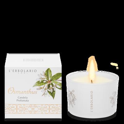 Osmanthus candela profumata l'Erbolario