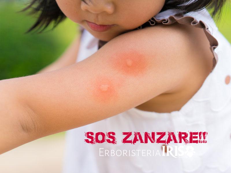 Sos zanzare news erboristeria Irisi prodotti antizanzara